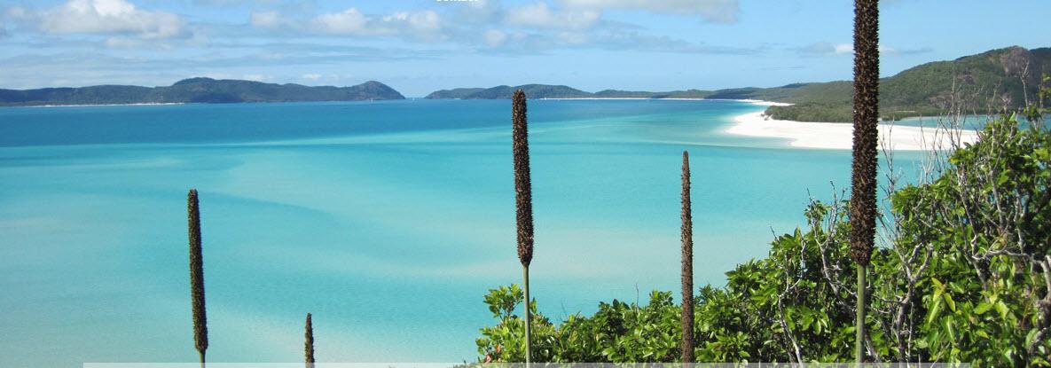 at Waters Edge Resort -