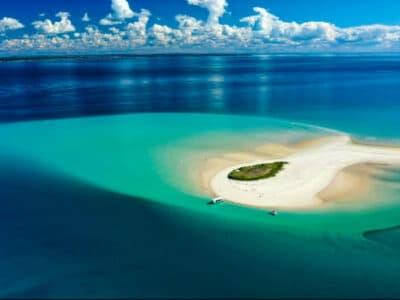 Hervey Bay Eco Marine Tours -