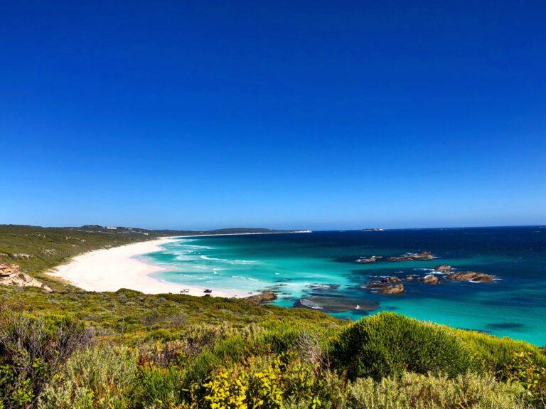 Margarets Forest - Tour Australia In Style - Australia Travel