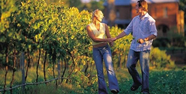 Perth Vineyards Holiday Park - Tour Australia In Style - Australia Travel