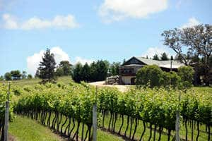 Kurrajong Downs winery - Tour Australia In Style - Australia Travel