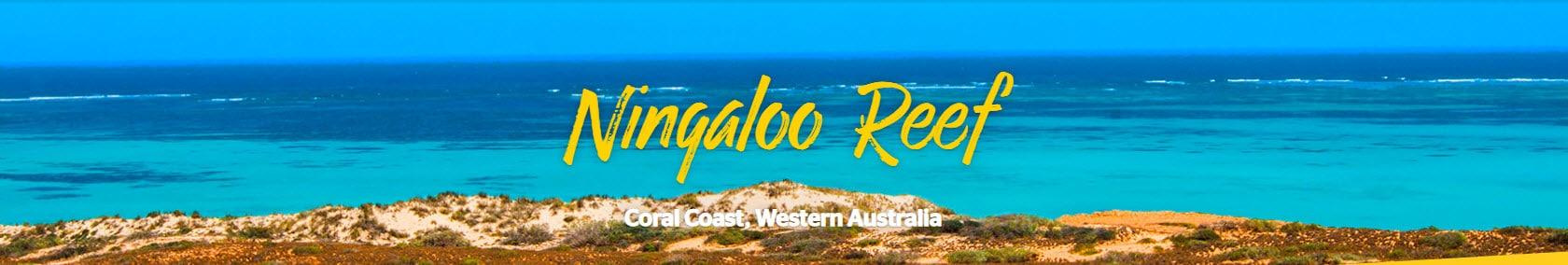 Ningaloo Reef Resort - Ningaloo