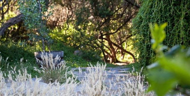 Big Blue Backyard - Tour Australia In Style - Australia Travel