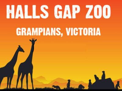 Halls Gap Zoo - Grampians - Halls Gap Zoo