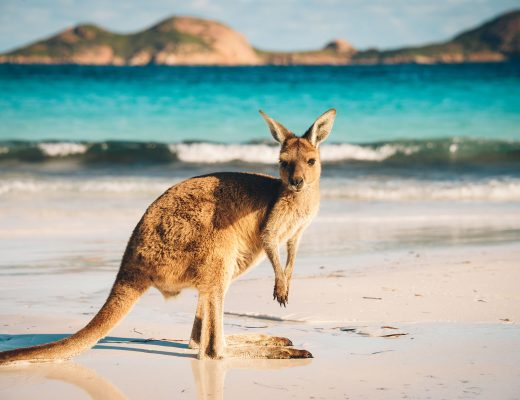 Tour Australia In Style - Australia Travel